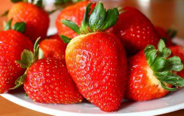 מסלול לתזונה בריאה